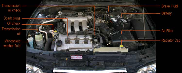Automobile under the hood inspection
